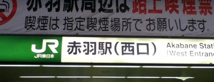 Akabane Station is one of 東京近郊区間主要駅.