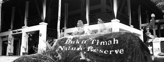 Bukit Timah Nature Reserve is one of Trek Across Singapore.