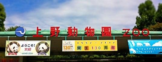 Ueno Zoo is one of Japan.