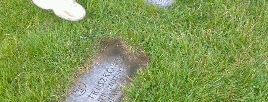 Holy Cross Cemetery is one of Parks/Outdoor Spaces in GR.