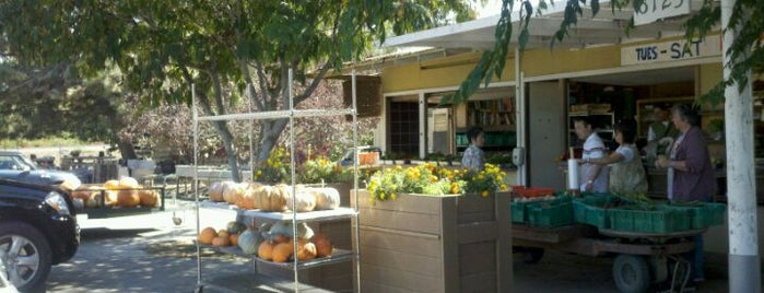 Chino's Vegetable Shop is one of Favorite Haunts Insane Diego.