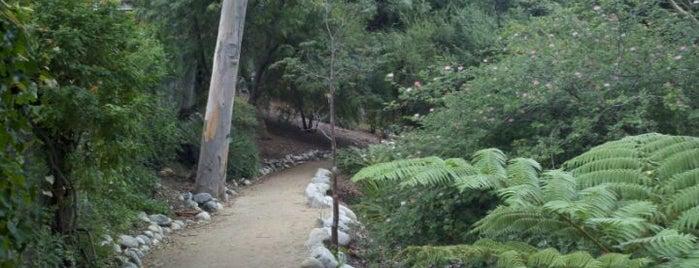 UCLA Mildred E. Mathias Botanical Garden is one of Explore the Campus.