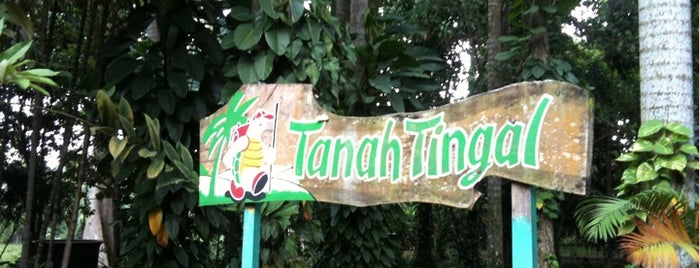 Tanah Tingal is one of Places in Pamulang. Tangerang..