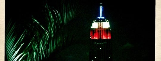 230 Fifth Rooftop Lounge is one of Rooftop Bars in the World.