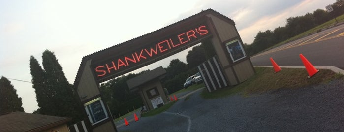 Shankweiler's Drive-In Theatre is one of Local stuff to do.