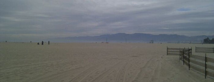 Venice Beach is one of I love LA...we LOVE IT!.