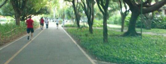 Parque da Jaqueira is one of conheço.