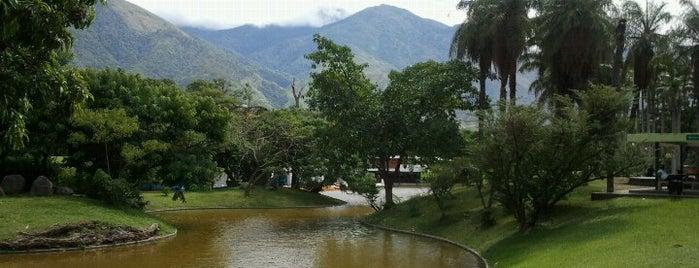 Parque Generalísimo Francisco de Miranda is one of Caracas must.