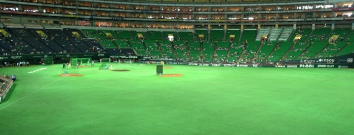 Fukuoka Yahuoku! Dome is one of Japan Triple Play.