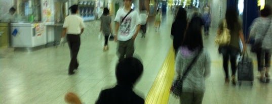 Shin Sapporo Station (T19) is one of 札幌市営地下鉄 東西線.