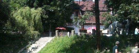 Na Marjánce is one of Pivní Poutník.