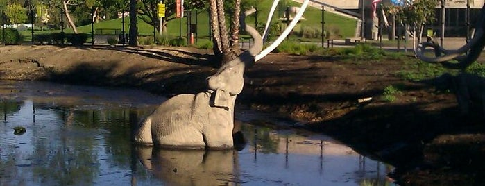 La Brea Tar Pits & Museum is one of Los Angeles by an LA Local.
