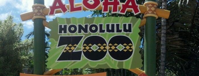 Honolulu Zoo is one of Oafu.