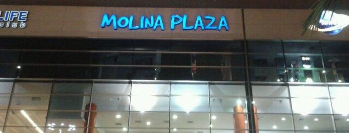 C.C. Molina Plaza is one of La Molina Best Places.