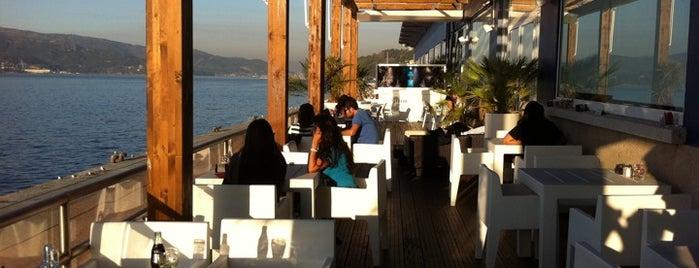 Albatros Lounge is one of Vigueses.com Copas, nocturno.