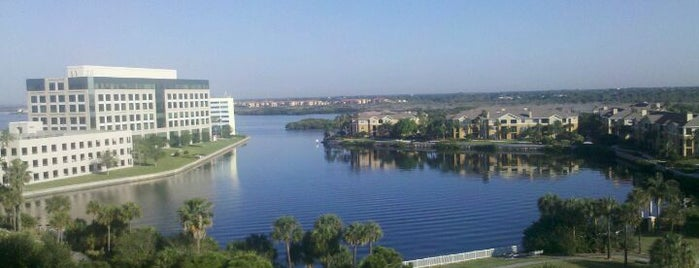 The Westin Tampa Bay Is One Of 15 Best Hotels In