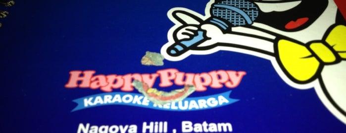 Happy Puppy Karaoke is one of Batam Pubs & Karaoke.