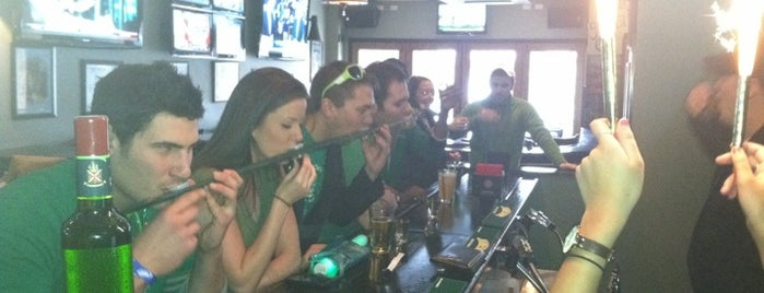 The Irish Oak is one of The 15 Best Places for An Irish Beer in Chicago.