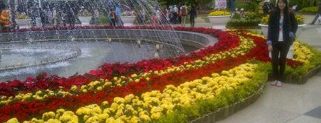 Dalat Flower Garden is one of Đà Lạt.