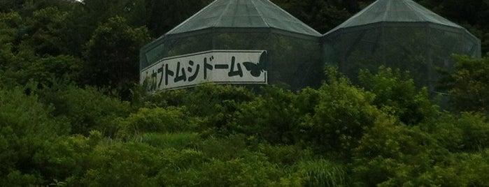 佐久平PA (上り) is one of その他.