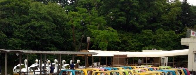 Inokashira Park is one of Tokyo City Guide.