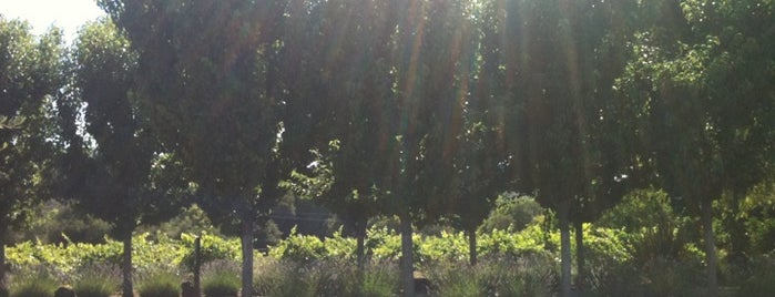 Passalacqua Winery is one of Gorgeous, Burgeoning Wine Road Gardens.