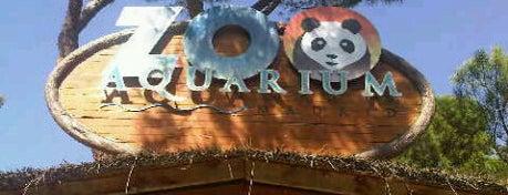 Zoo Aquarium de Madrid is one of Conoce Madrid.