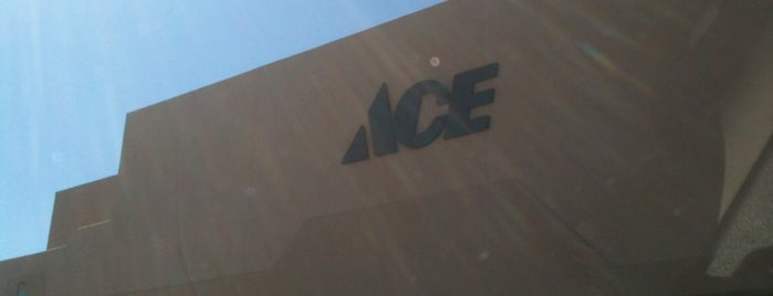 Ace Hardware is one of Stores.