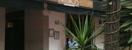 Arturo's is one of Condechi.