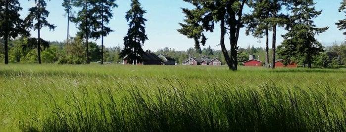 Fort Steilacoom Off-Leash Dog Park is one of Dog walking in Tacoma.