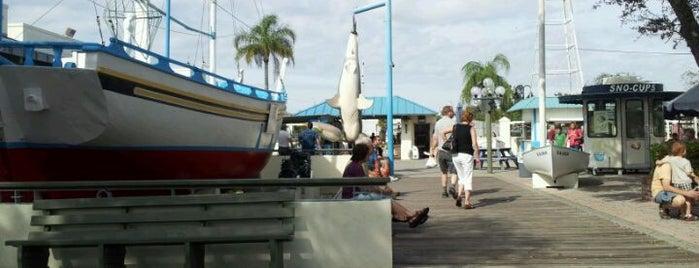 Tarpon Springs Sponge Docks (Visit Tarpon) is one of Things to do in Tampa Bay.