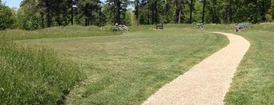 Petersburg National Battlefield is one of RVA parks.