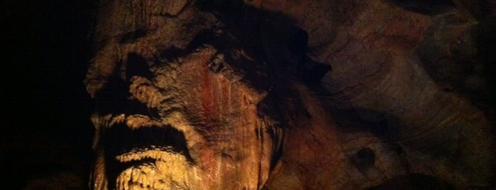 Kents Cavern Caves is one of Devon.