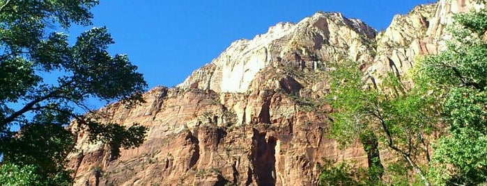 Zion National Park is one of Visit the National Parks.