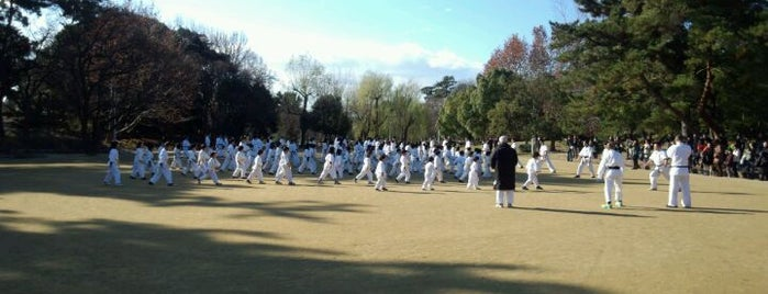 Hattori Ryokuchi Park is one of 日本の都市公園100選.