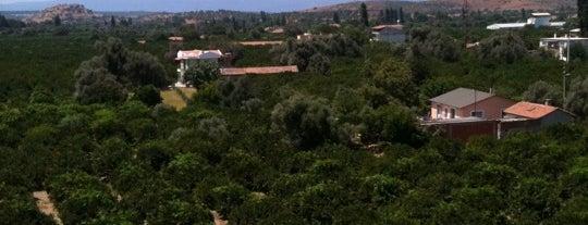 Seferihisar is one of İzmir.