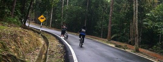 Bukit Cerakah Shah Alam is one of KL.