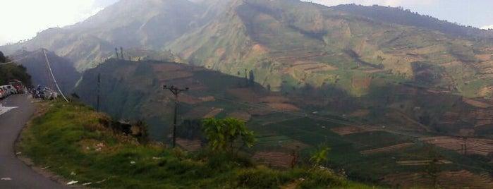 Dieng Plateau is one of trip dieng.