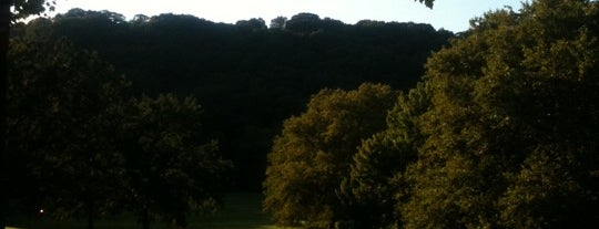 Inwood Hill Park is one of Least Known but Most Rewarding Places in NYC.