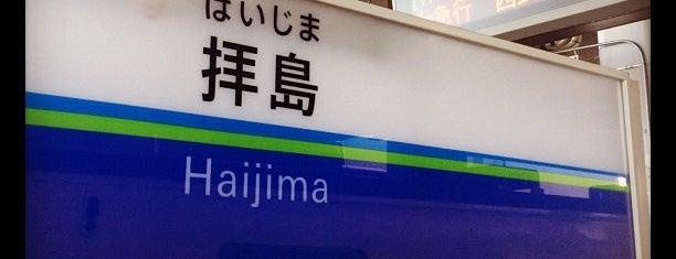 Haijima Station is one of 東京近郊区間主要駅.