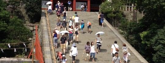 Tsurugaoka Hachimangu is one of 死ぬ前に訪れたい歴史ある場所.