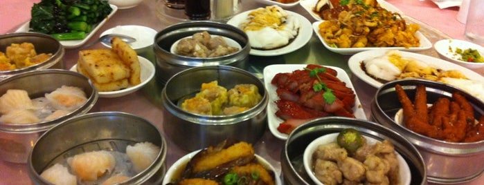 Hong Kong Pearl Seafood Restaurant is one of Gaslight-family2015-dc-todo.
