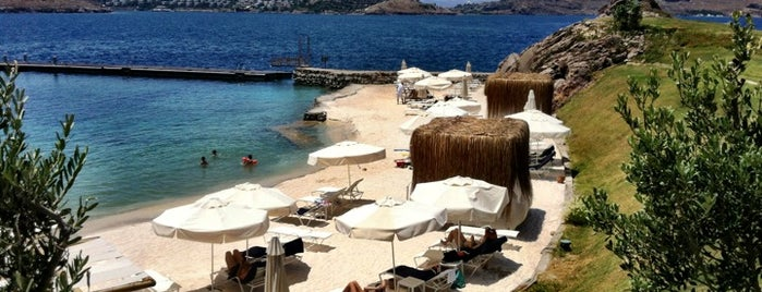 PalmaBeach is one of Bodrum !!.