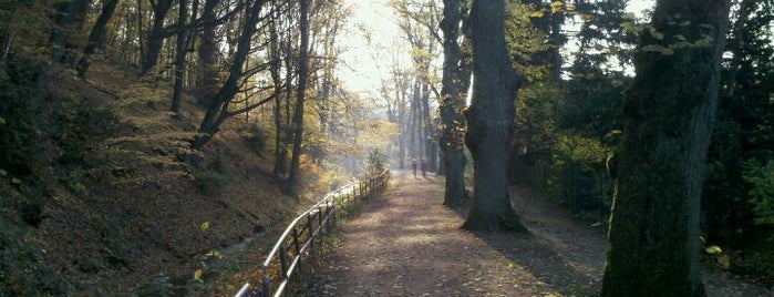 Kurpark is one of Mainz♡Wiesbaden.