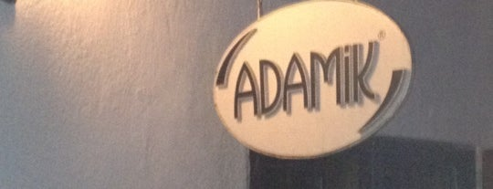 Adamik is one of Bodrum Bodrum.