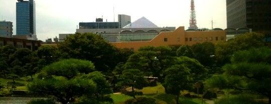 Kyu Shiba Rikyu Garden is one of Tokyo as a local.