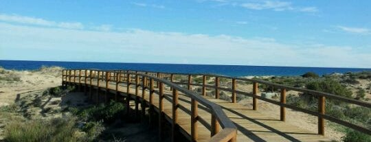 Playa del Carabassí is one of Playas.