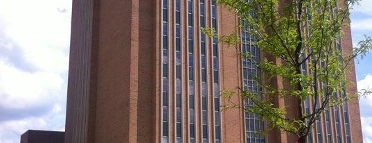 KSU Library is one of School.