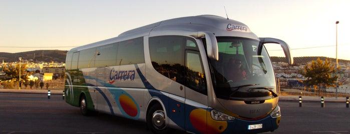AUTOBUSES CARRERA is one of Autobuses Carrera.