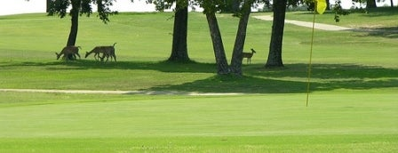Arrowhead State Park Golf Course is one of Hit the Links at OK State Parks.